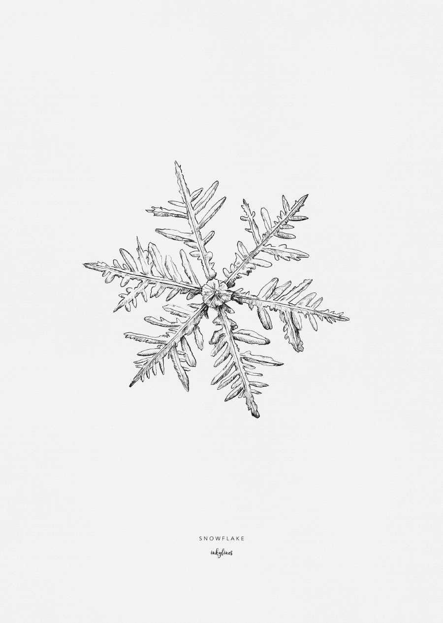 Mini-affiche A5 « snowflake » * Inkylines par Dutch Brands collective
