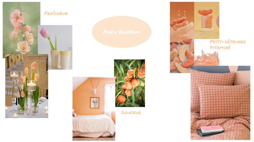 Planche ambiance Peach Blossom